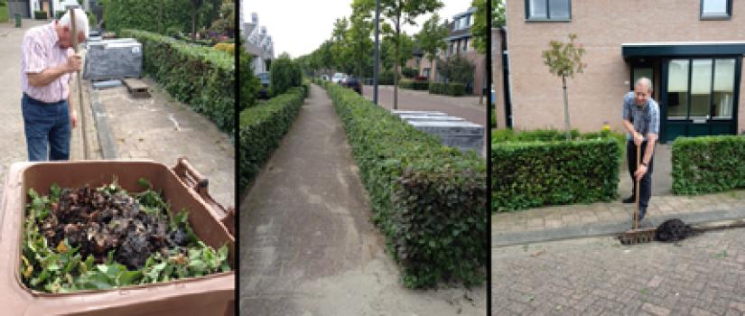 ZO-Ulvenhout-Nieuwe_Dreef