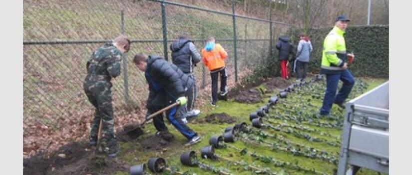 ZO-Sportpark-Steijnlaan_(0)