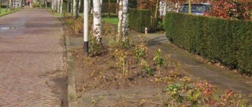 ZO-Sportpark-Mgr_Hopmanstraat_21-WD