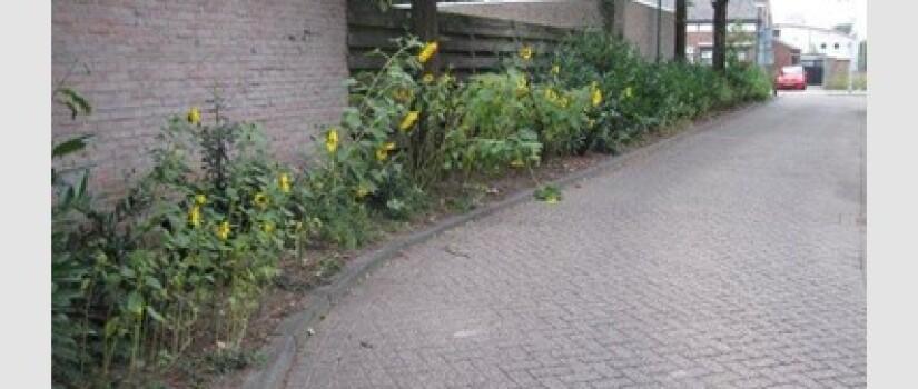 NW-Prinsenbeek-Schoolstraat_(0)