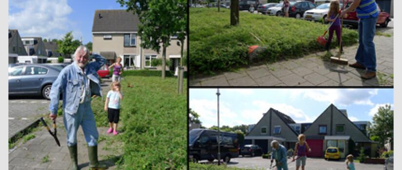 NW-Heksenwiel-Asterdkraag-WD__(0)
